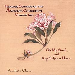 Healing Sounds of the Ancients, Vol. 2 | Dodax.fr
