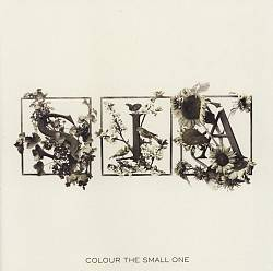 Colour the Small One | Dodax.co.jp