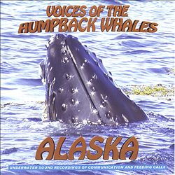 Voices of the Humpback Whales Alaska Performed by the Amazing Humpback Whales of Alaska | Dodax.co.uk