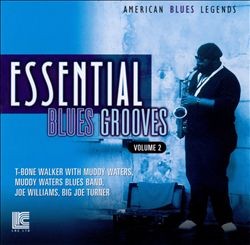 Essential Blues Grooves, Vol. 2 | Dodax.com
