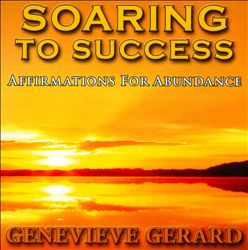 Soaring To Success | Dodax.ch
