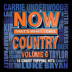 Now That's What I Call Country, Vol. 6 | Dodax.com