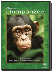 Chimpanzee | Dodax.co.uk