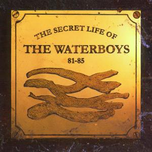 Secret Life of the Waterboys 81-85 | Dodax.nl