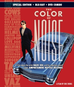 the color of noise (blu ray + dvd)   Dodax.pl