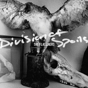 Division of Spoils | Dodax.ch
