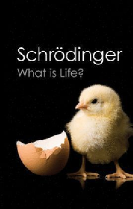 What is Life? | Dodax.ch