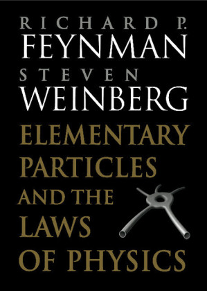 Elementary Particles and the Laws of Physics | Dodax.at