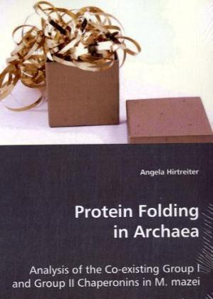 Protein Folding in Archaea | Dodax.at
