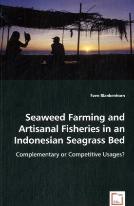 Seaweed Farming and Artisanal Fisheries in an Indonesian Seagrass Bed   Dodax.at