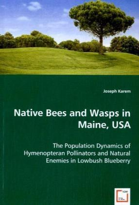 Native Bees and Wasps in Maine, USA   Dodax.de
