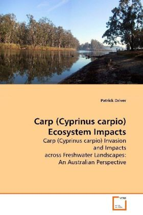 Carp (Cyprinus carpio) Ecosystem Impacts | Dodax.de