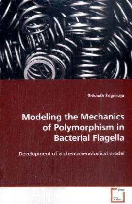 Modeling the Mechanics of Polymorphism in Bacterial Flagella | Dodax.ch