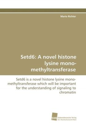 Setd6: A novel histone lysine mono-methyltransferase | Dodax.pl