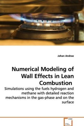 Numerical Modeling of Wall Effects in Lean  Combustion | Dodax.de