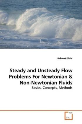 Steady and Unsteady Flow Problems For Newtonian | Dodax.pl