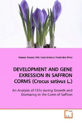 DEVELOPMENT AND GENE EXRESSION IN SAFFRON CORMS  (Crocus sativus L.) | Dodax.de