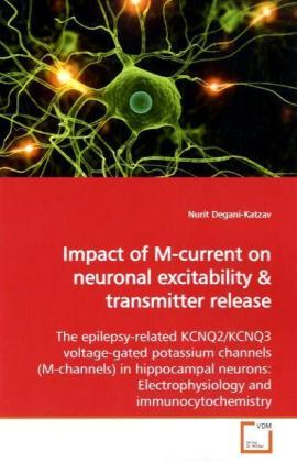 Impact of M-current on neuronal excitability | Dodax.ch