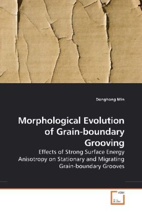 Morphological Evolution of Grain-boundary Grooving | Dodax.de