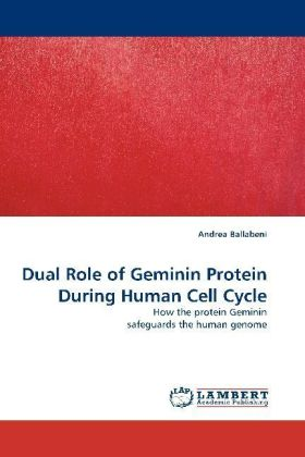 Dual Role of Geminin Protein During Human Cell Cycle | Dodax.ch