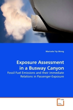 Exposure Assessment in a Busway Canyon | Dodax.pl