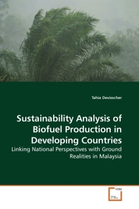 Sustainability Analysis of Biofuel Production in Developing Countries   Dodax.pl