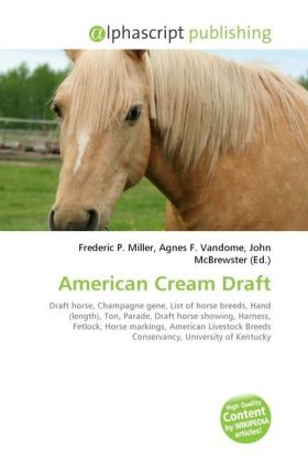 American Cream Draft | Dodax.de