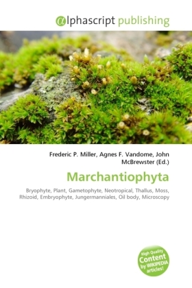 Marchantiophyta | Dodax.at