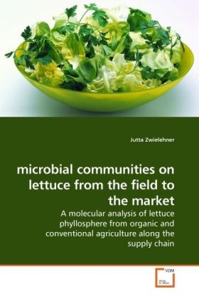 microbial communities on lettuce from the field to the market | Dodax.ch