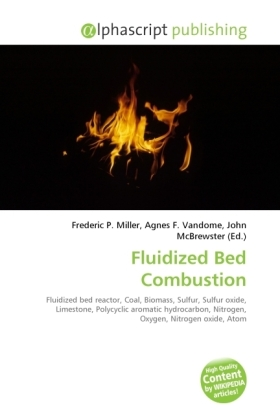 Fluidized Bed Combustion | Dodax.at