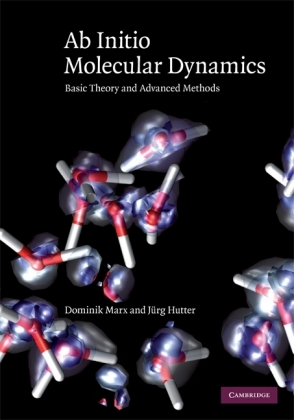 Ab Initio Molecular Dynamics | Dodax.at