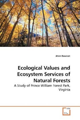Ecological Values and Ecosystem Services of Natural Forests | Dodax.pl