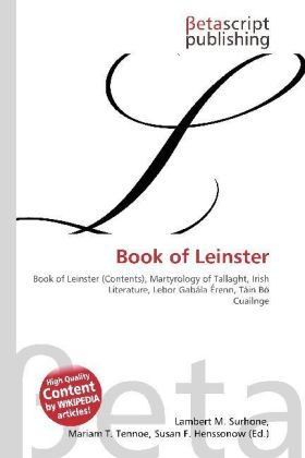 Book of Leinster | Dodax.at