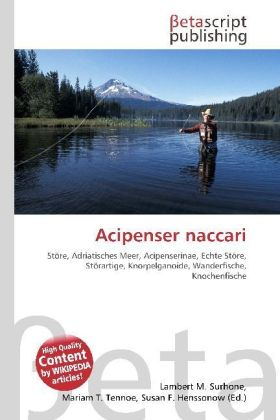 Acipenser naccari | Dodax.at