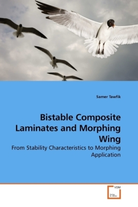 Bistable Composite Laminates and Morphing Wing   Dodax.pl