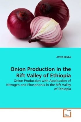 Onion Production in the Rift Valley of Ethiopia | Dodax.de
