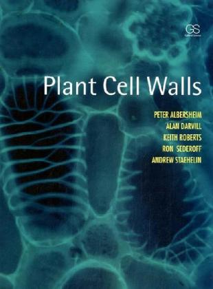 Plant Cell Walls | Dodax.ch