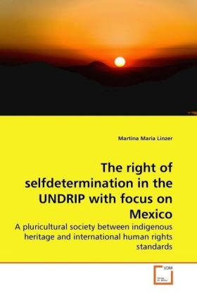 The right of selfdetermination in the UNDRIP with focus on Mexico   Dodax.at