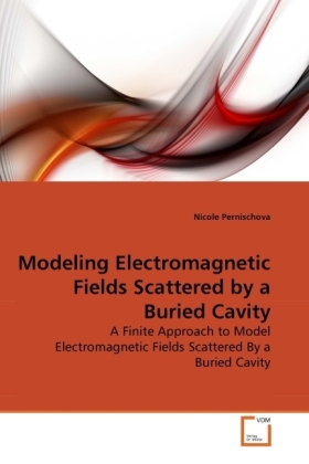 Modeling Electromagnetic Fields Scattered by a Buried Cavity | Dodax.ch