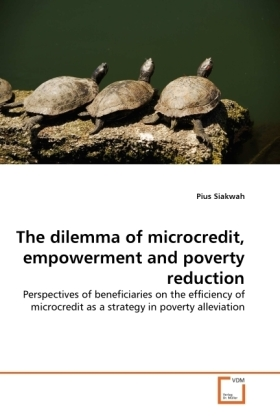The dilemma of microcredit, empowerment and poverty reduction   Dodax.pl