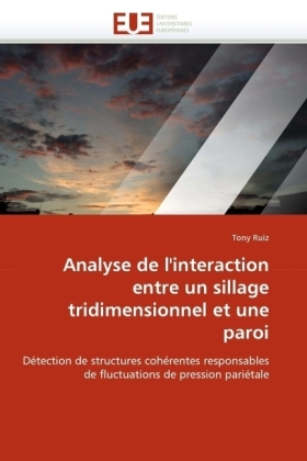 Analyse de l'interaction entre un sillage tridimensionnel et une paroi | Dodax.at