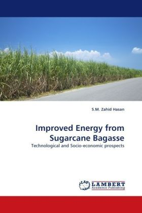 Improved Energy from Sugarcane Bagasse | Dodax.pl
