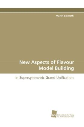 New Aspects of Flavour Model Building | Dodax.pl