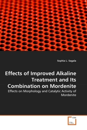 Effects of Improved Alkaline Treatment and Its Combination on Mordenite | Dodax.pl