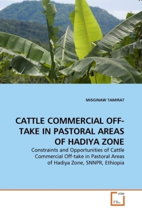 CATTLE COMMERCIAL OFF-TAKE IN PASTORAL AREAS OF HADIYA ZONE   Dodax.at