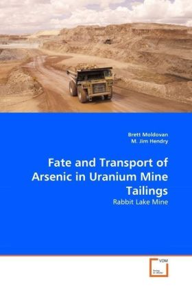 Fate and Transport of Arsenic in Uranium Mine Tailings | Dodax.pl