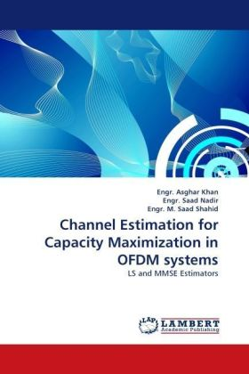 Channel Estimation for Capacity Maximization in OFDM systems | Dodax.ch