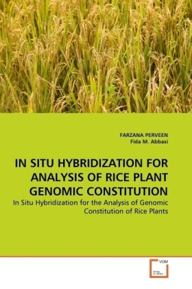 In Situ Hybridization for Analysis of Rice Plant Genomic Constitution | Dodax.de
