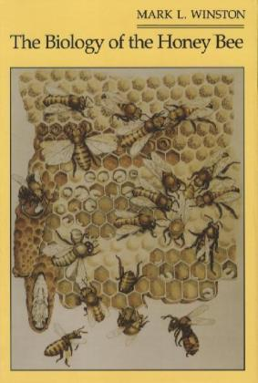 The Biology of the Honey Bee | Dodax.at