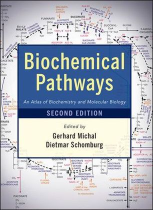 Biochemical Pathways | Dodax.pl